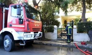 Νέα τραγωδία σε πυρκαγιά: Νεκρή εντοπίστηκε γυναίκα στη Λακωνία