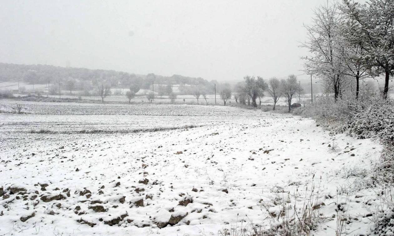 Καιρός - Κοζάνη: Άρχισε να χιονίζει στα ορεινά - Δείτε φωτογραφίες