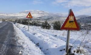 Καιρός - Μακεδονία: Δείτε πού είναι απαραίτητες οι αντιολισθητικές αλυσίδες