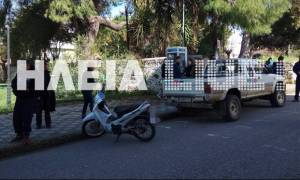 Αμαλιάδα: Μηχανή παρέσυρε 10χρονο μαθητή