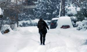 Καιρός: Σφοδρή χιονόπτωση στα ορεινά των Τρικάλων - Πού χρειάζονται αλυσίδες (vid)