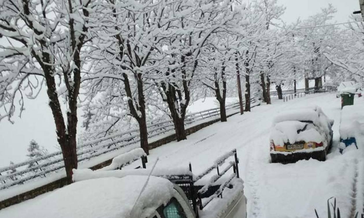 Κακοκαιρία: Κλειστά τα σχολεία στο Δομοκό την Παρασκευή λόγω χιονιά