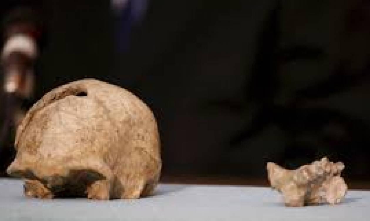Απίστευτο! Αυτός ήταν ο πρώτος άνθρωπος που μίλησε πριν 1,5 εκατ. χρόνια