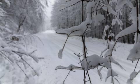Καιρός - Έκτακτο δελτίο ΕΜΥ: Ποιες περιοχές θα «χτυπήσουν» τα έντονα φαινόμενα τις επόμενες ώρες