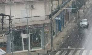 Καιρός: Ξεκίνησε η χιονόπτωση στην πόλη της Κοζάνης (pics)
