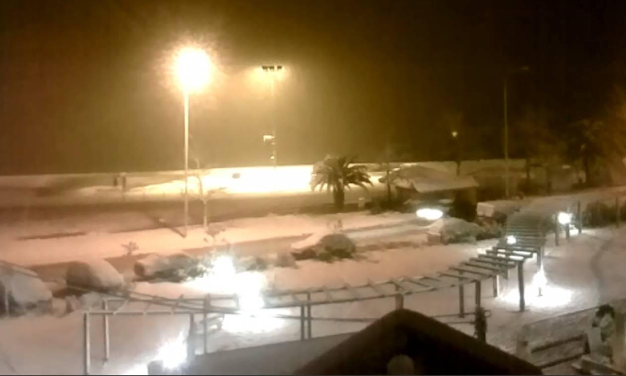 Καιρός ΤΩΡΑ: Απίστευτο χιόνι στη Θάσο – Το έστρωσε μέχρι τις… βάρκες (ΔΕΙΤΕ LIVE)