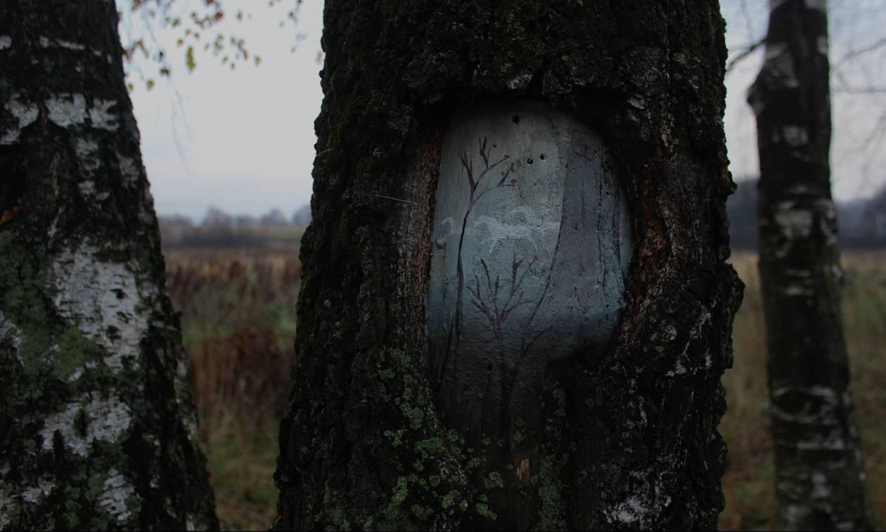 Viral: Η τέχνη της διευρυμένης πραγματικότητας πάνω σε δέντρα (Pics)