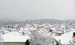 Έκτακτο δελτίο ΕΜΥ: Κύμα κακοκαιρίας με καταιγίδες και χιόνια - Στην «κατάψυξη» όλη η χώρα (pics)