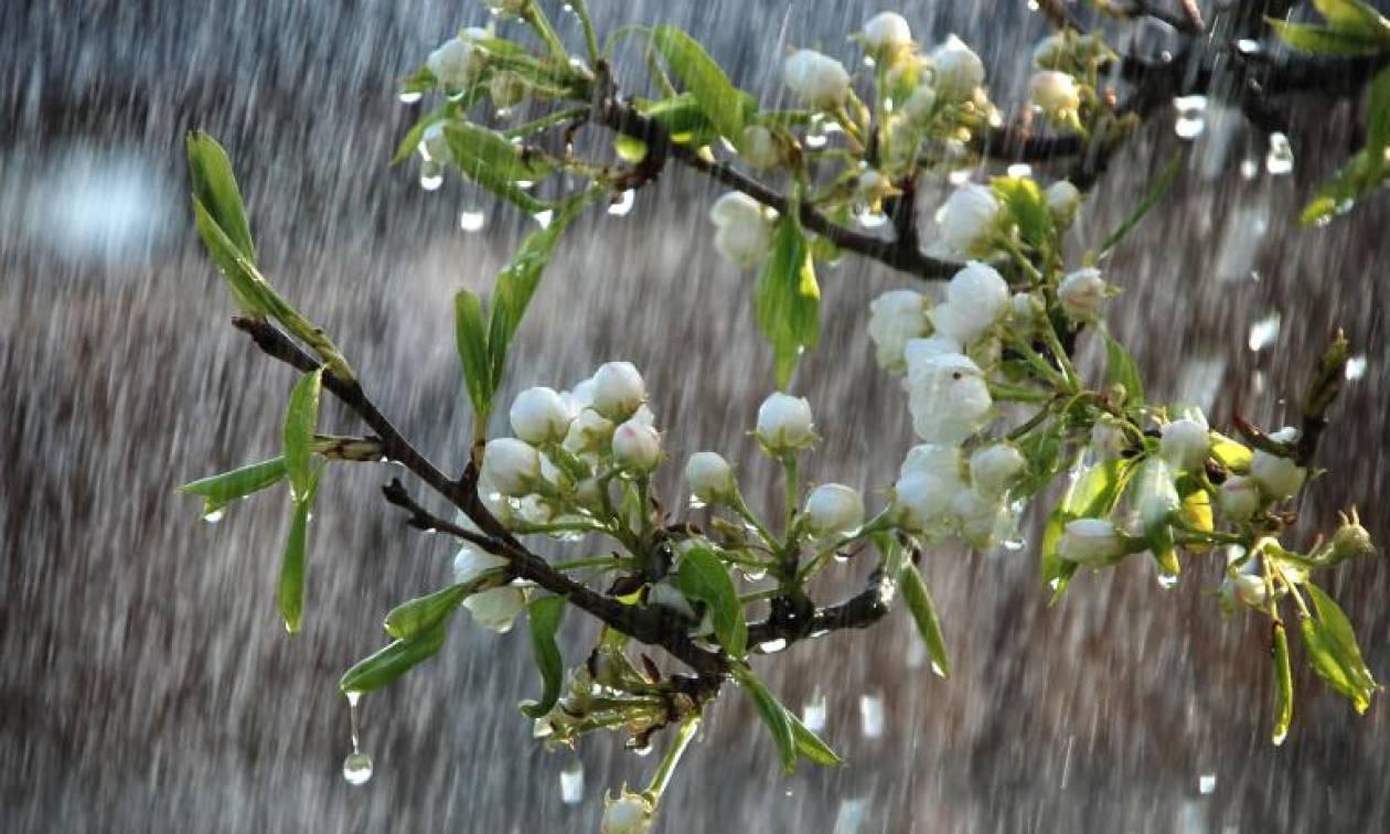 Αλλάζει ο καιρός: Ανοιξιάτικες θερμοκρασίες με βροχές και καταιγίδες τις επόμενες μέρες