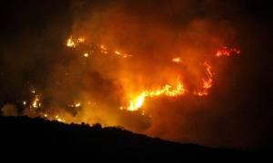 Συγκλονιστικές εικόνες από τις πυρκαγιές που σημειώθηκαν στη χώρα - 130 μέτωπα σε ένα 24ωρο (pics)