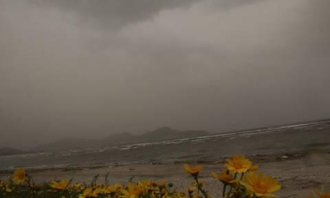 Έκτακτο δελτίο ΕΜΥ: Νέο κύμα σκόνης θα «πνίξει» τη χώρα - Πού θα σημειωθούν λασποβροχές (pics)