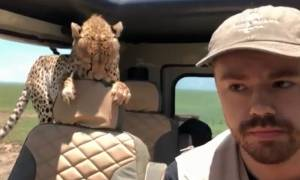 Viral: Πήγε να κυνηγήσει άγρια ζώα σε σαφάρι και αυτό που συνέβη θα το θυμάται για πάντα (Vid)
