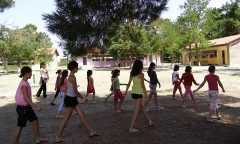 ΟΑΕΔ - Παιδικές κατασκηνώσεις: Ξεκινούν σε λίγες μέρες οι αιτήσεις
