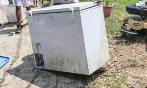 Φρίκη: Κρατούσε το πτώμα της μητέρας του σε καταψύκτη για τρία χρόνια