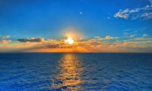 «Μυστήριο» στις ακτές των Κυκλάδων - Το τεράστιο πλάσμα που ξέβρασε η θάλασσα (pics)