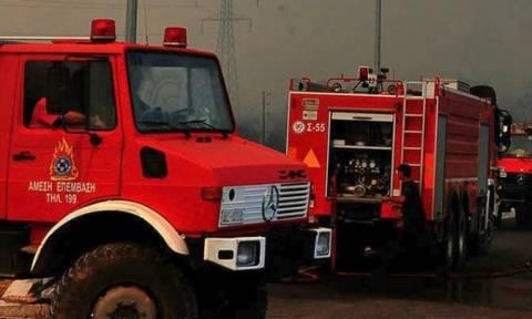 Φωτία - Πυρκαγιά: Ξεκίνησε η αντιπυρική περίοδος στην Κρήτη