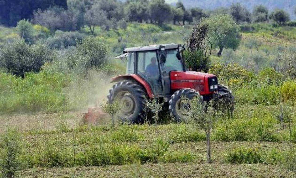 Ξεκινούν οι αιτήσεις αγροτών για τα συστήματα πρόληψης ζημιών