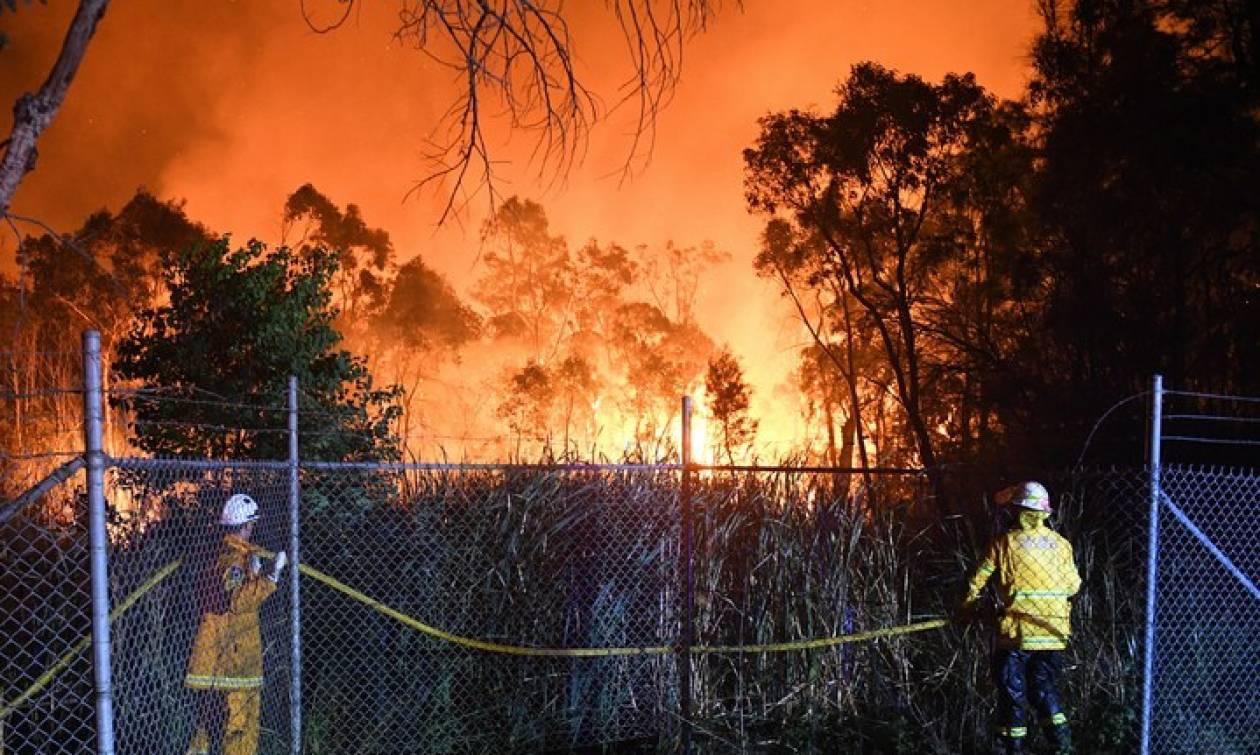 Αυστραλία: Μεγάλη δασική πυρκαγιά απειλεί σπίτια στα προάστια του Σίδνεϊ (pics+vid)