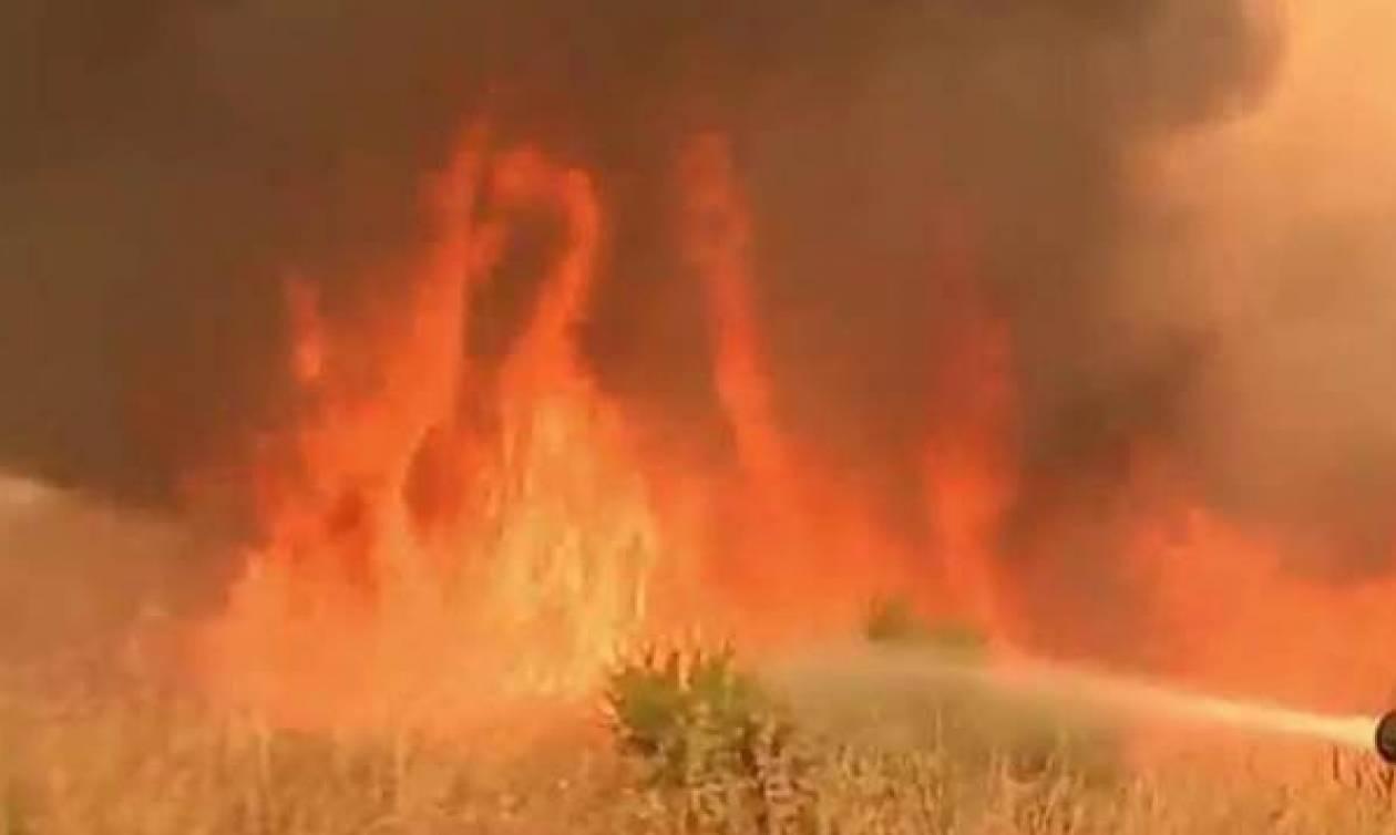 Καλιφόρνια: Μεγάλη φωτιά κοντά στην περιοχή όπου διεξάγεται το Coachella (vid)