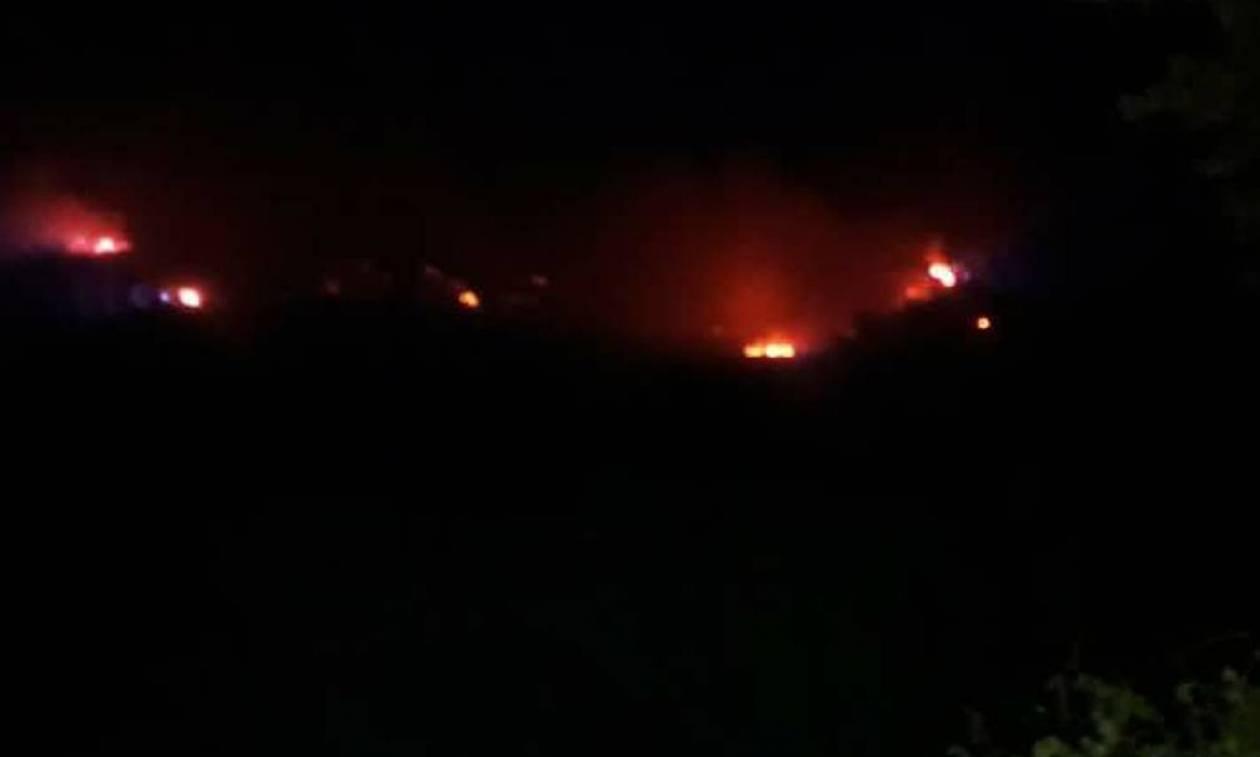 Φωτιά: Πύρινος «εφιάλτης» σε Ηλεία και Αρκαδία (pics+vid)