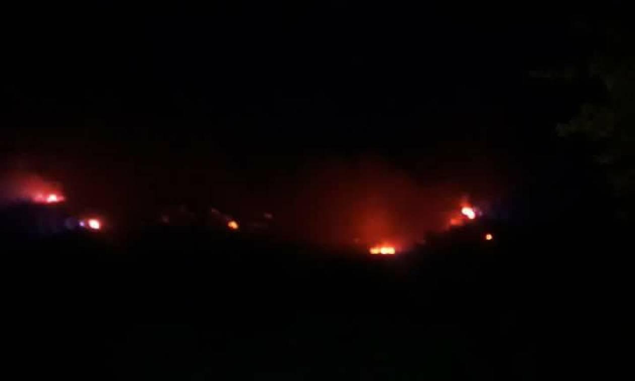 Φωτιά Ηλεία: Φόβοι για επέκταση της πυρκαγιάς – Προληπτικά μέτρα στην Αρχαία Ολυμπία