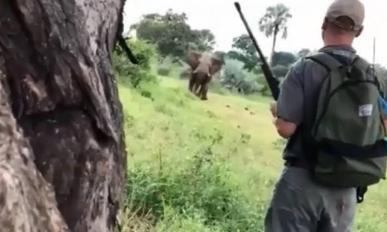 Ξεναγός σώζει ζευγάρι από επίθεση ελέφαντα - Αυτό που έκανε θα σας αφήσει άφωνους (vid)
