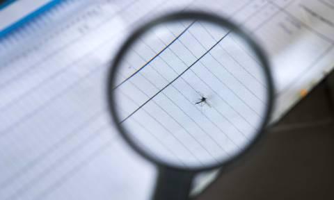 Μέτρα για την πρόληψη της ελονοσίας από το ΚΕΕΛΠΝΟ
