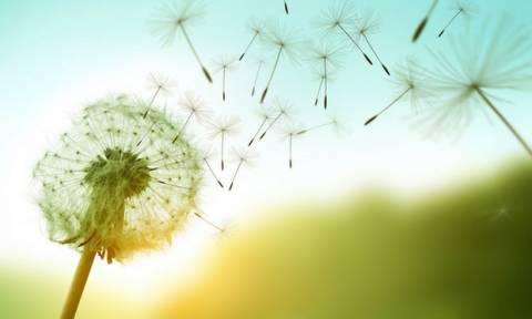 Ζώδια Σήμερα 18/4: Εκπλήξτε, αιφνιδιάστε και πάρτε τα ρίσκα σας