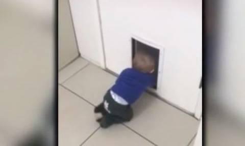 Η μεγάλη απόδραση μωρών: Δείτε πώς καταφέρνουν να …διαφύγουν (video)