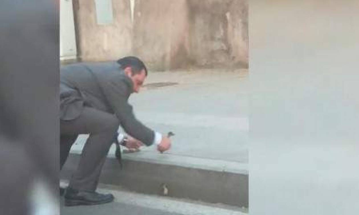 Viral: Οδηγός λεωφορείου σταμάτησε στη μέση του δρόμου για να βοηθήσει παπάκια (vid)