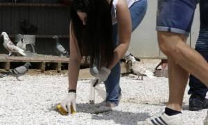 Μενίδι: Βρήκαν πάλι σφαίρα στο σχολείο που έχασε τη ζωή του ο μικρός Μάριος