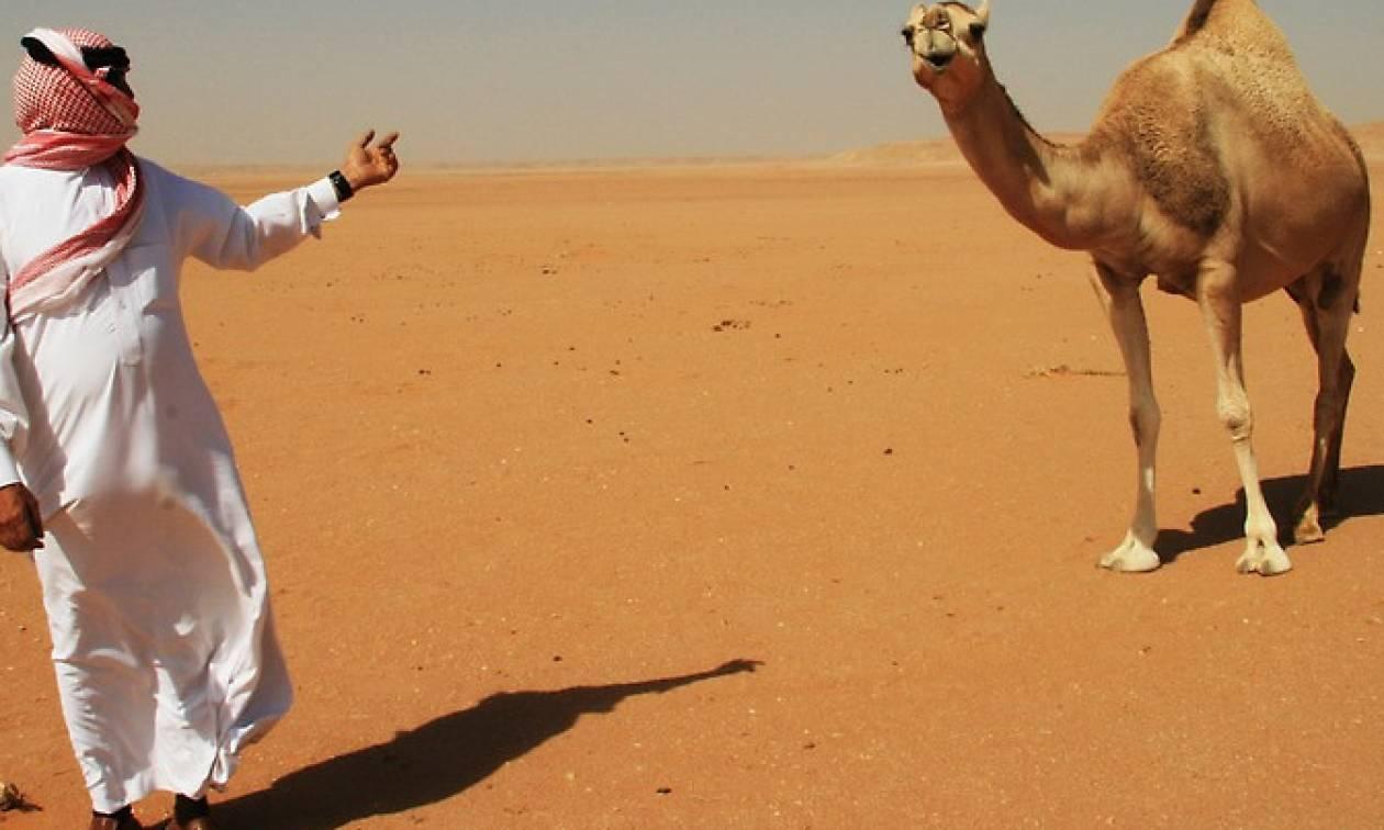 Απίστευτο: Σαουδάραβας πήγε για ψώνια με την καμήλα του (vid)