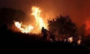 Φωτιά ΤΩΡΑ: Οριοθετήθηκε η πυρκαγιά στους Αγίους Θεοδώρους