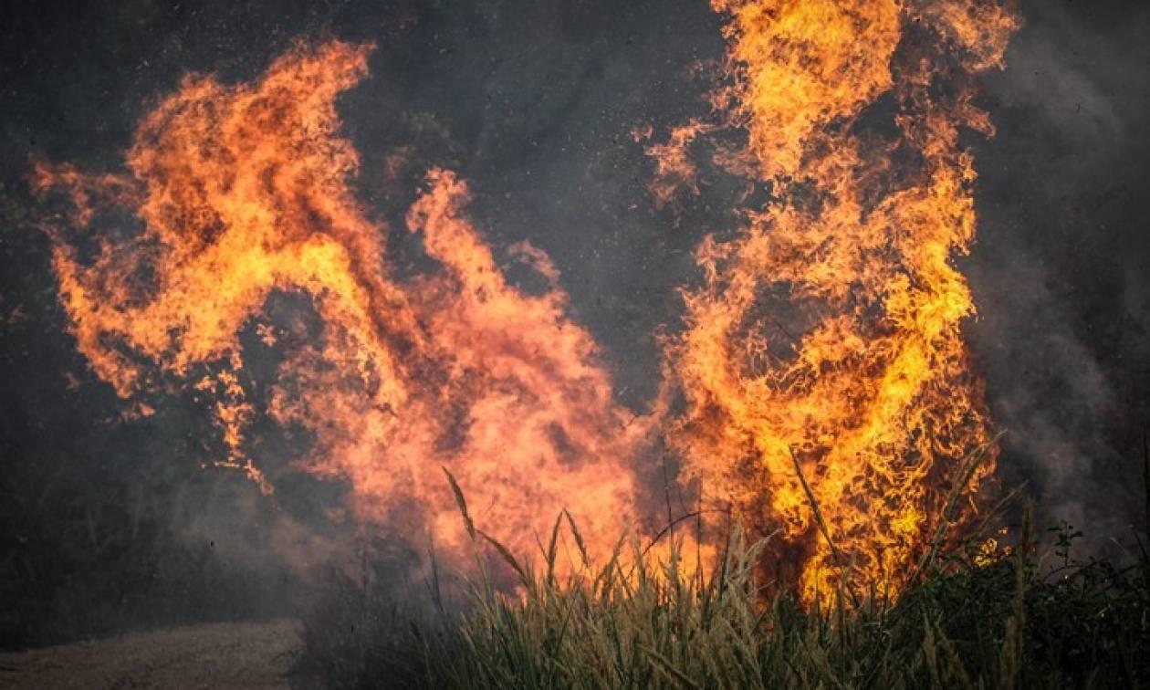 Φωτιά ΤΩΡΑ στην Πλάκα της Νάξου (vid)