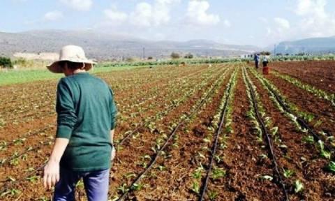 Ρύθμιση - ανάσα μέσα στον Μάιο για τους αγρότες
