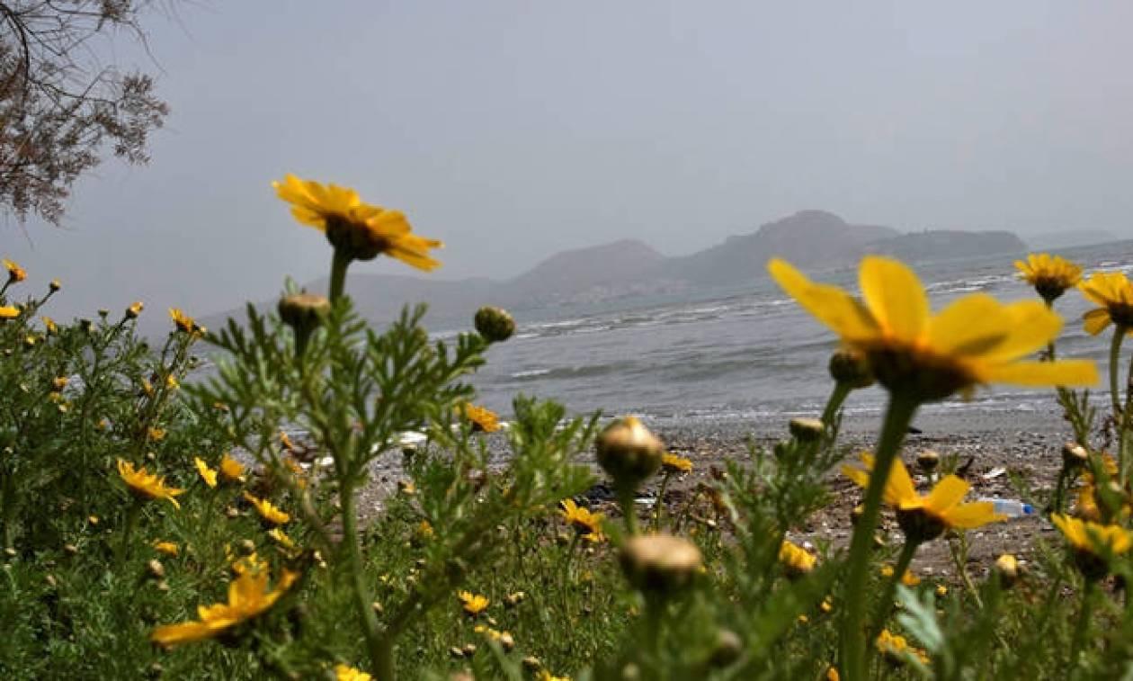 Καιρός τώρα: Επιστρέφει η… «άνοιξη» με συννεφιά, βροχές και αφρικανική σκόνη