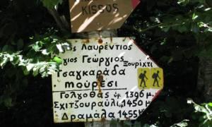 Πήλιο: Οδοιπορικό στα μονοπάτια του βουνού των Κενταύρων