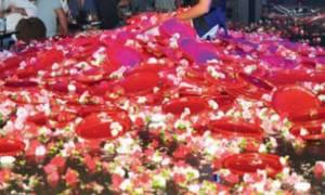 Σάλος στη νυχτερινή ζωή της Πάτρας: Στη φυλακή o «ζημιάρης» που πέταγε λουλούδια με τα... καφάσια!