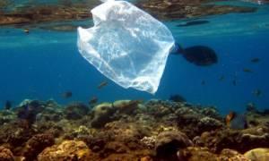Βρέθηκε πλαστική σακούλα στο πιο βαθύ σημείο των ωκεανών