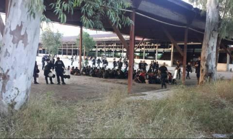 В городе Патры полиция проводит зачистку палаточного городка , где поселились мигранты