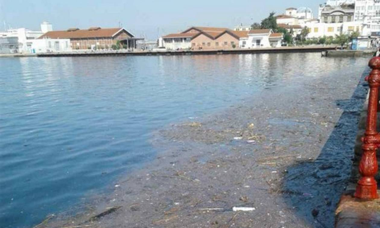Εικόνες ντροπής στη Θεσσαλονίκη: Γέμισε σκουπίδια και πλαγκτόν ο Θερμαϊκός (pics)