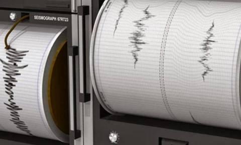 В Наполи произошло землетрясение 4,6 балла