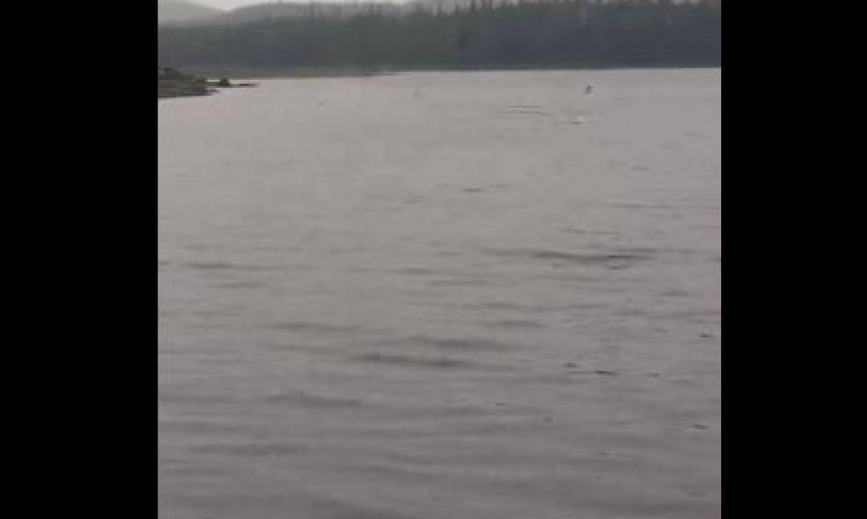 Ψαράς δεν πρόλαβε να ρίξει το καλάμι του και ξαφνικά βλέπει τα ψάρια... (video)