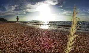 Καιρός - Ο Τάσος Αρνιακός στο Cnn Greece: Η πρόβλεψη για το τριήμερο του Αγίου Πνεύματος