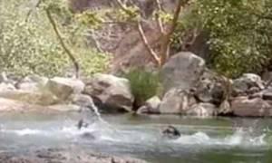 Τραγωδία: Τρεις νεαροί βιντεοσκόπησαν τον πνιγμό τους (σκληρές εικόνες)