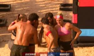 Survivor 2: Συντριπτική νίκη των διάσημων