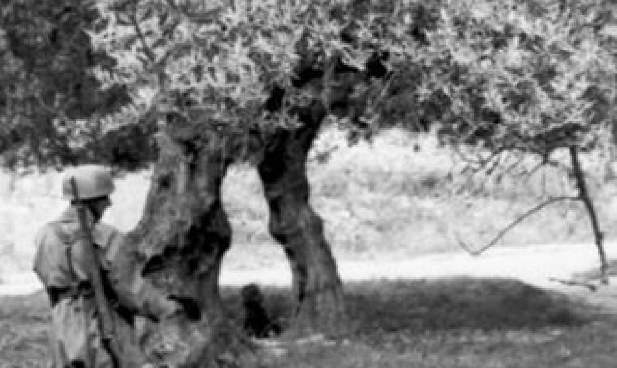 Σαν σήμερα το 1941 η Σφαγή στο Κοντομαρί