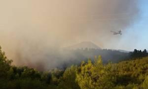 Μεγάλη φωτιά στην Εύβοια: Οι πρώτες εικόνες (pics)