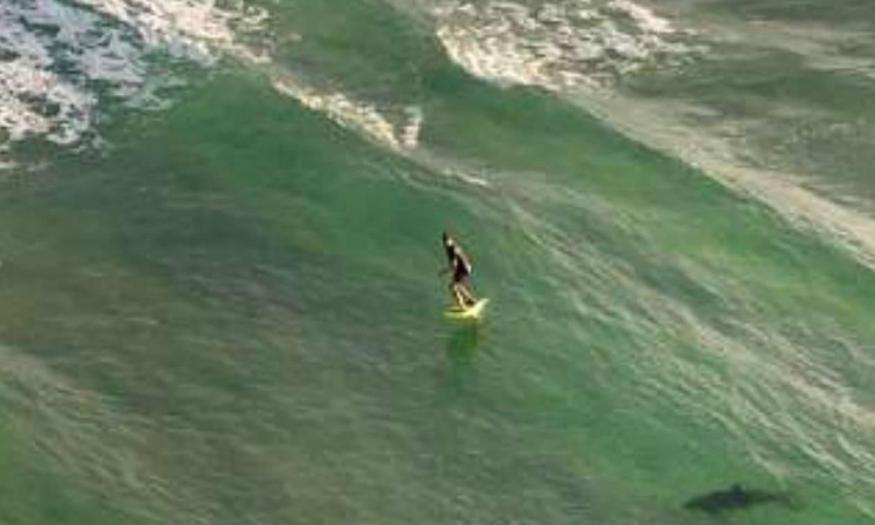 Αυστραλία: Eφιαλτικές εικόνες από καρχαρία που παραμονεύει σέρφερ
