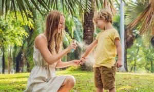 Φυσικό εντομοαπωθητικό για κουνούπια: 3 σπιτικές συνταγές για να το φτιάξετε